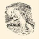 Rima Kato - Faintly Lit (CD)