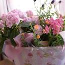 母の日 紫陽花の寄せ鉢セット (紫陽花プラス アルファ)