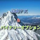 ☆セット販売☆狐峰FX&バイナリーオプション☆インジケーター☆