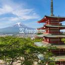 新緑 新倉山浅間公園 富士山[富士吉田市]