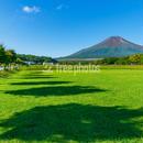 山中湖花の都公園 芝生広場からの富士山[山中湖村]