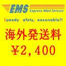 EMS (国際スピード郵便)送料 1kgまで
