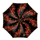 Cherry blossoms and Butterfly Umbrella