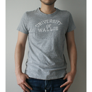WALLS UNIVERSITY    col:TOP GREY