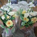 岩田さんのお花