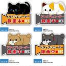 犬・猫柄☆ドライブレコーダーマグネットサイン☆問屋直送品です。