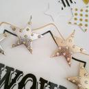 【star studded】ピアス&イヤリング