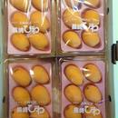 茂木びわ12玉~15玉(4パック)化粧箱入長崎びわ
