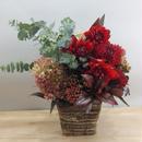 定期お届け便 季節花のアレンジメント 10,000円