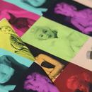 Robert Kaufman「Marilyn Monroe」  MULTI 110㎝幅10㎝単位
