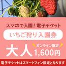 ☆数量限定☆いちご狩り入園券(3月11日~分) 大人(中学生以上) オンライン購入特典付き