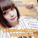 【3月・4月・5月おまとめ】小泉里紗の野球は9回2アウトから  個人スポンサー12960円