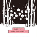 DJまほうつかい 『Ghosts in the Forest EP』 特典CDR+ステッカー付