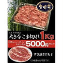 A 4 以 上 !         極み宮崎牛【1kg】