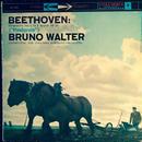 ベートーヴェン:交響曲第6番「田園」 ブルーノ・ワルター ハイレゾ DSD 2.8MHz