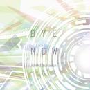 CD「下和田ヒロキ/バイ・ナウ」