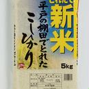 【新米入荷】長崎県平戸の棚田で獲れたこしひかり5kg