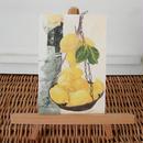 postcard / 街角のレモン