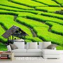 3D 壁紙 1ピース 1㎡ 自然風景 畑 緑 小屋  インテリア 装飾 寝室 リビング 耐水 防カビ h02434