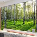 3D 壁紙 1ピース 1㎡ 自然風景 森林の景色 樺の木 インテリア 装飾 寝室 リビング h02301