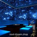 3D 壁紙 1ピース 1㎡ 宇宙 銀河 ブラックライト 蛍光 インテリア 装飾 寝室 リビング h02251