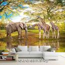 3D 壁紙 1ピース 1㎡ 動物フォト 森林 ぞう キリン  インテリア 装飾 寝室 リビング 耐水 防湿 h02546