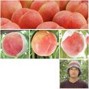 期間限定!桃だけ定期便2017(おすすめ3品種)【送料無料】