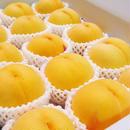 【期間限定】黄金桃 2kg(5〜8玉)
