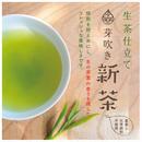 【ご予約受付中】「芽吹き 新茶」フレッシュな生茶仕立て/袋入り50g