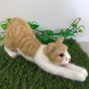 のんび〜り伸び猫☆