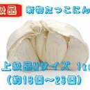 《上級品》新物たっこにんにく(熟成乾燥)Mサイズ 1kg