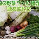 """【定期品】【こだわり】""""定期""""宅配サービス「栄養機能性野菜Sセット」送料無料"""