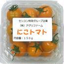栄養こだわり野菜「にこトマト:ミニトマト(黄)150gパック/8パック入り」