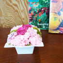プリザーブドローズとジニアのアレンジメントL/白陶器【rose pink】