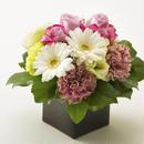 バラとガーベラのボックスアレンジメントM【mauve pink】/生花