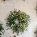シルバーグリーンとアナベルのクリスマス