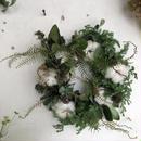 綿とシースターのクリスマス