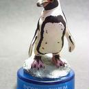 10.フンボルトペンギン