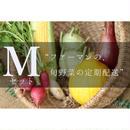 定期配送 Mセット(9~11種類のお野菜)