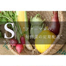定期配送 Sセット (6〜8種類のお野菜)