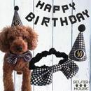 お誕生日3点セット★黒★とんがり帽子・ガーランド・蝶ネクタイ☆10歳以上
