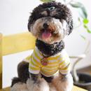バナナプリント半袖ボーダーTシャツ (黄)