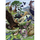 Flora & Fauna, High Mountains  :  Marion Wieczorek - 29618