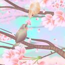 A4イラスト060 桜恋文