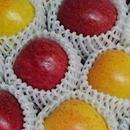 先行予約受付中【りんご2kg】食べ比べセット ※10月末より順次発送