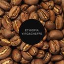 エチオピア・イルガチェフ / 100g