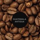 グアテマラ・アンティグア / 100g