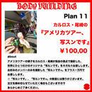 BVP Plan11 カルロス・尾崎の「アメリカツアー、写スンです。」
