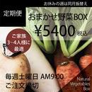 【定期便】おまかせ野菜BOX-Lサイズ