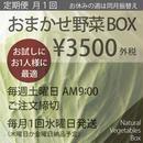 (月1回)おまかせ野菜BOX - Sサイズ